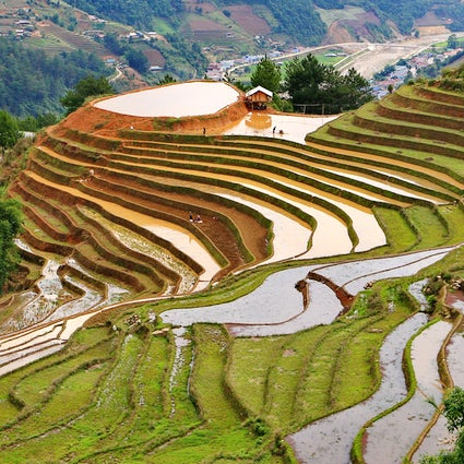 Mu Cang Chai : rizières en terrasses et culture tribale