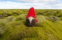 Treffen Sie die Elfen von Island