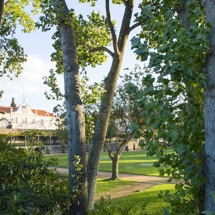 Jardines al viento - otoño en Santo Amaro de Oeiras