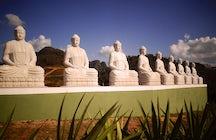 Visitando y fotografiando el Monasterio Budista Zen Morro da Vargem
