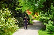 Gardens of Lisbon - Jardim Botânico
