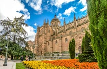 Medieval Architectural Beauty in Salamanca