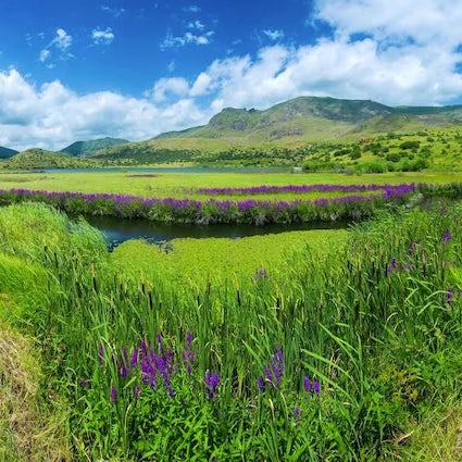 Isola galleggiante del lago di Batabat - Nakhchivan tour parte 2