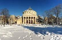 Regala un león para el Ateneo de Bucarest