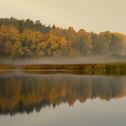 Explore la reserva natural de Nacka en Estocolmo
