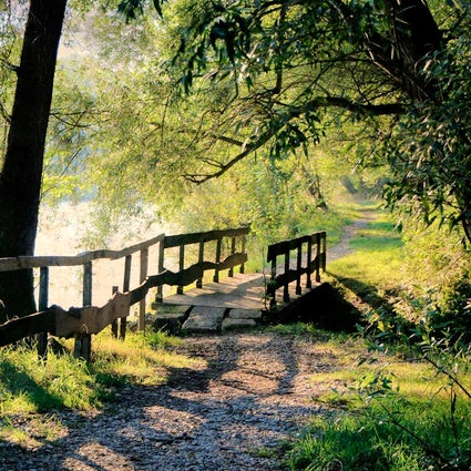 Island of Love on Mura River