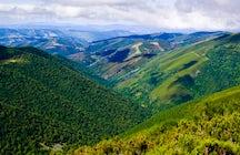 Escapar del calor en el norte de España - Sierra de Ancares parte 1