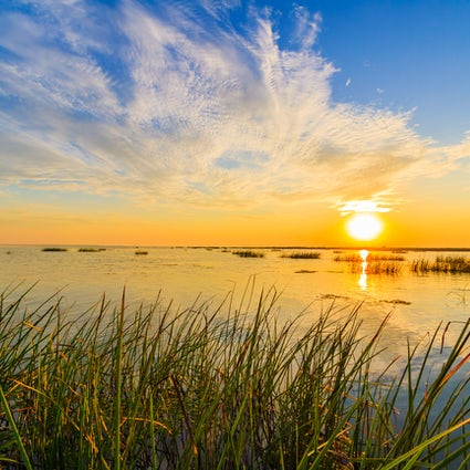 Skarb przyrody - delta Dunaju w Rumunii