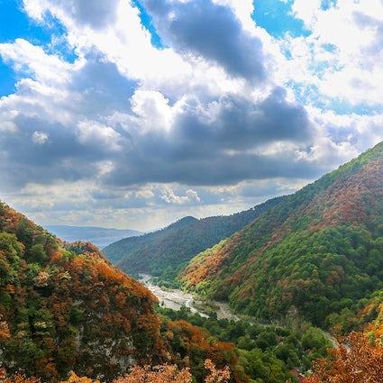 Kleurrijke bossen van Ismayilli