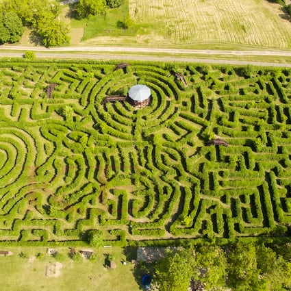 Le plus grand labyrinthe de haies d'Europe à Ópusztaszer