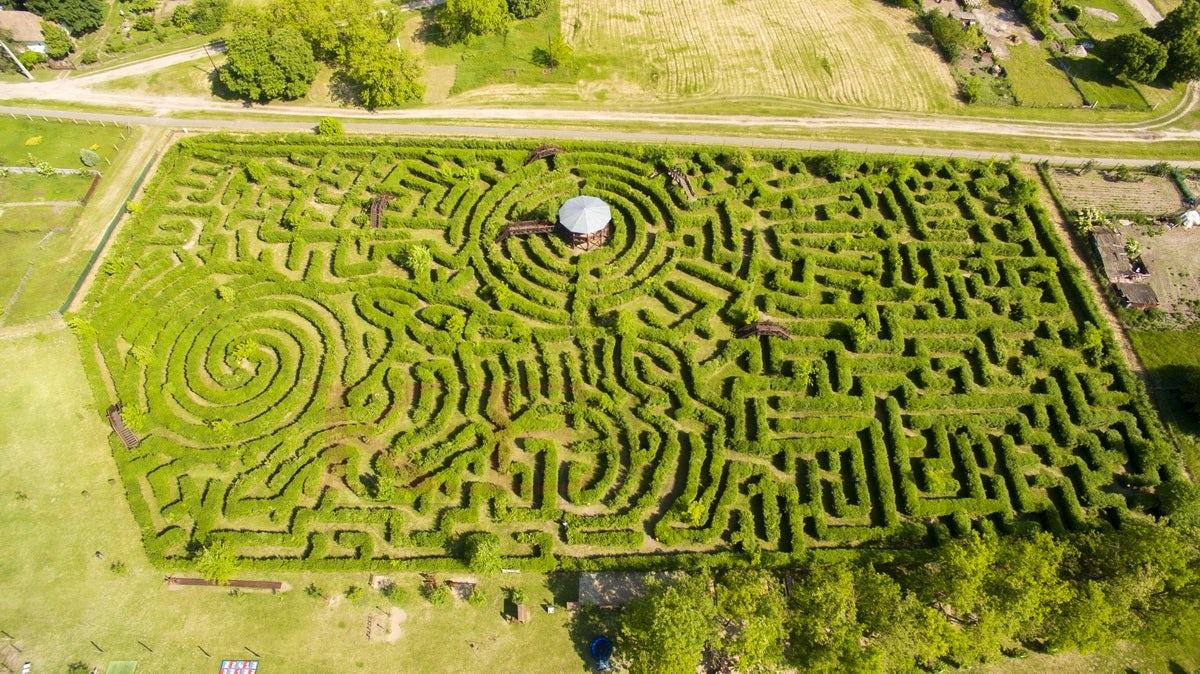 Europe's biggest hedge labyrinth in Ópusztaszer
