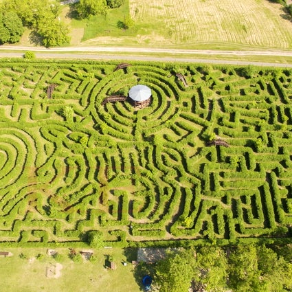 Europe's biggest hedge labyrinth in Ópusztaszer