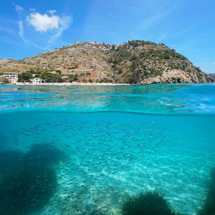 Scuba diving in Javea