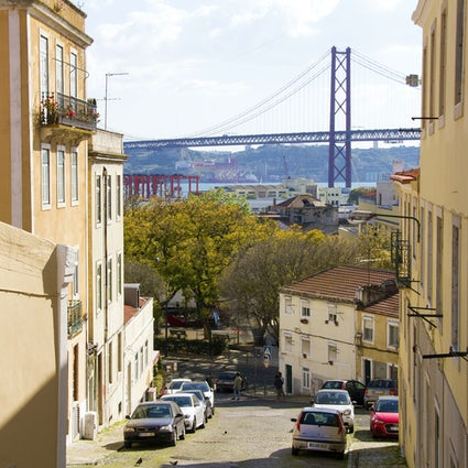 A hidden garden with a view of busy Lisboa