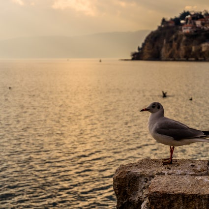 Quando Ohrid é um lar