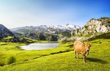 Pure Lakes in Asturias