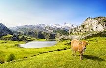 Pure Lakes in Asturias