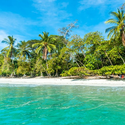 Manuel Antonio National Park –beaches you'll never forget!