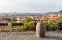 Prague's Hidden Wine Bars