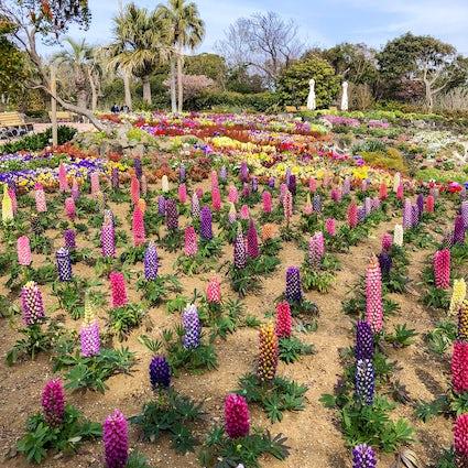 Tout en fleurs : le New York Lamp Museum and Flower Garden