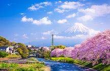 To Shizuoka, with love