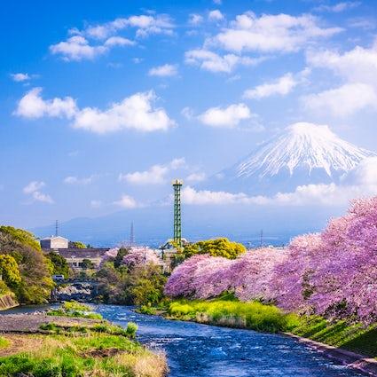 A Shizuoka, con amor.