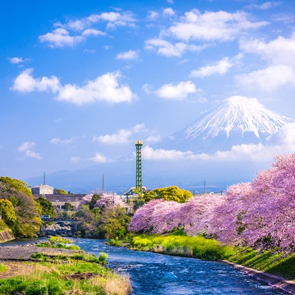 A Shizuoka, avec amour