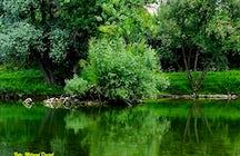 50 Sombras de Verde - Río Vrbas
