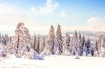 Skiing in the Harz mountains