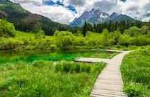 Walking in the greenery of Zelenci