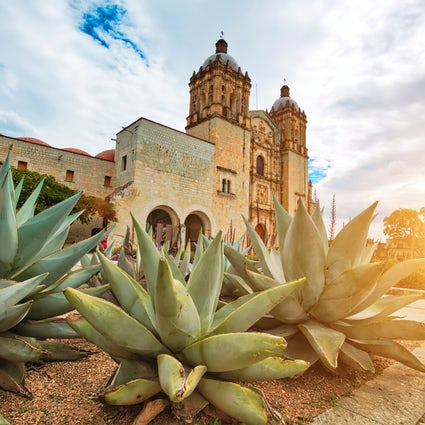Gastronomy, street food, and markets in Oaxaca