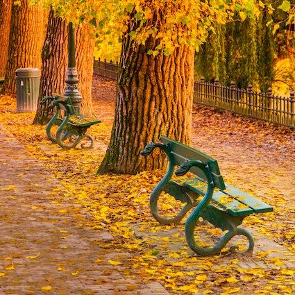 3 Beautiful Parks near Antwerp