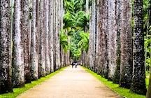 Jardim Botânico, où Rio rencontre la nature