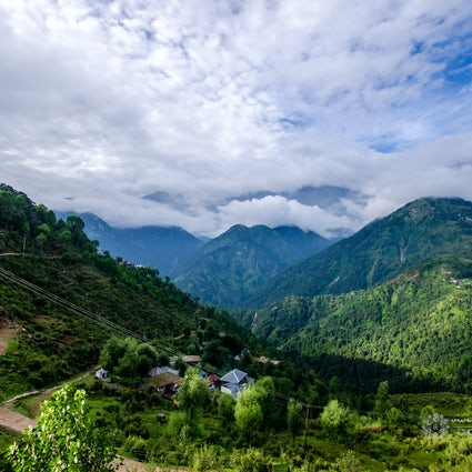 Natural foods and breathtaking greenery in Chail, India