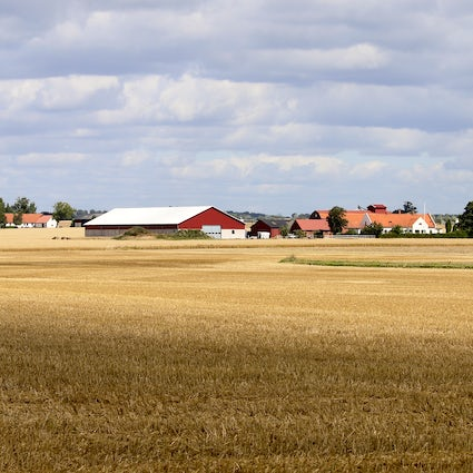 Visit Skåne and explore the south of Sweden