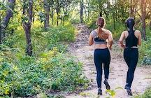 Fruska Gora mountain marathon