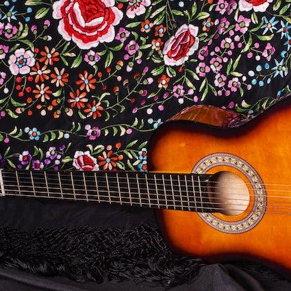 Flamenco in Pamplona – La Casa de Sabicas