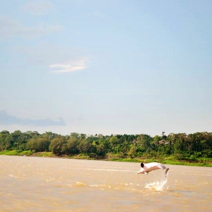 Exploring the Amazonas; Leticia and Puerto Nariño