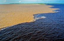 La rencontre des eaux, une beauté naturelle à Manaus