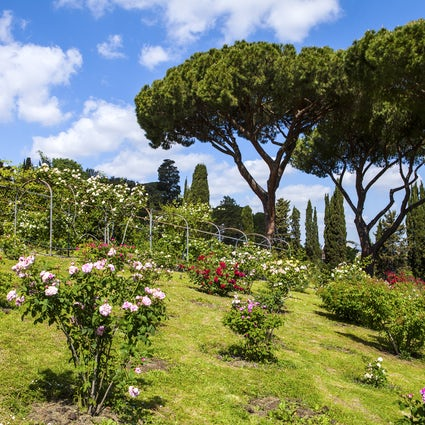 Spring In Rome (Part 2)