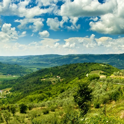 Amazing viewpoints of Istria: Motovun and Pazin