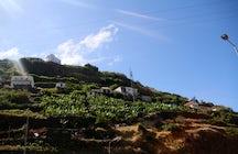 A Trip to Madeira - Calheta