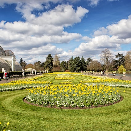 Kew Gardens in London