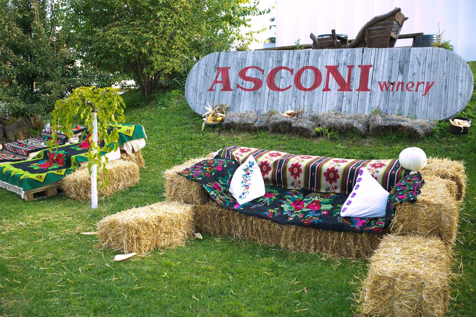 Cover picture © Credits to Asconi Winery