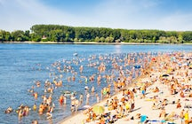 Casi como un mar: La playa más popular de Novi Sad