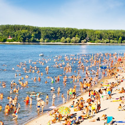 Almost like a sea: Novi Sad's most popular beach