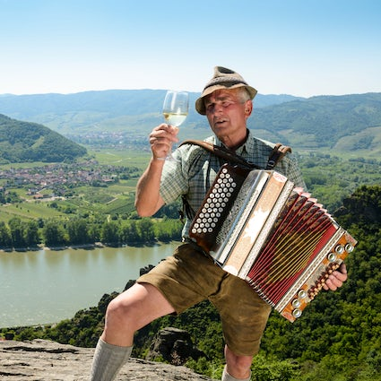 Wachau - the valley of top white wines