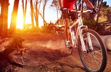 Mountain bike holiday for the extreme sports' lovers in Greece