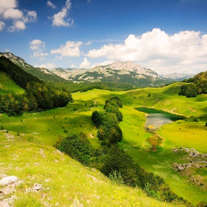 Natural treasure of Herzegovina - Sutjeska National Park