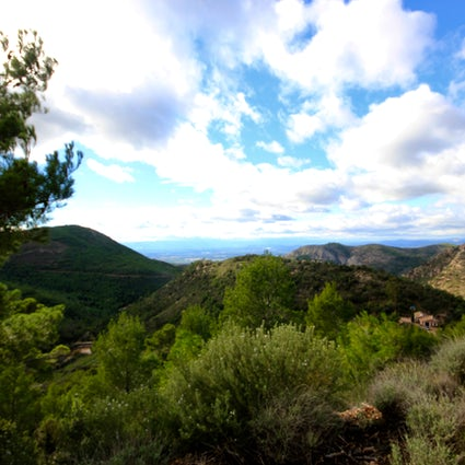 Bicicleta de montaña en la Sierra Calderona